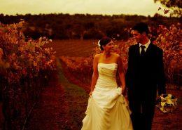 Sirromet-Wedding-Location-Photos-10