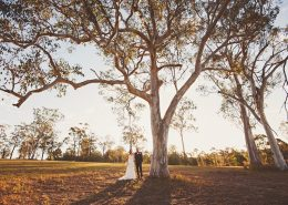 Sirromet-Wedding-Location-Photos-12