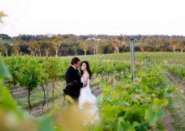 Sirromet-Wedding-Location-Photos-4